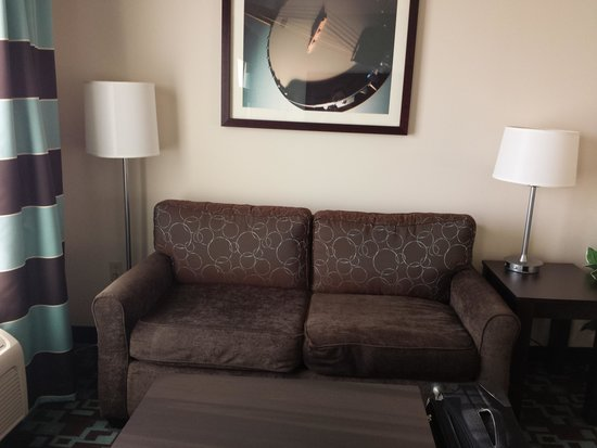 Hampton Inn & Suites Nashville @ Opryland: sofa