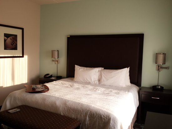 Hampton Inn & Suites Nashville @ Opryland: bed