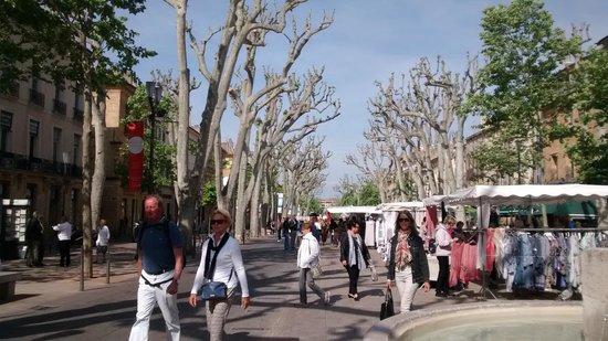 Cours Mirabeau / Aix-en-Provence