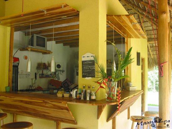 Kitchen Bar Picture Of Hotel Restaurant Mauna Loa Playa Avellanas
