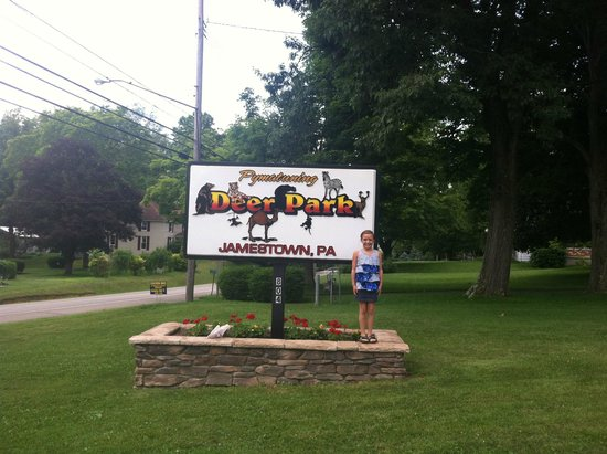 Deer Park is located in New Hope, Pennsylvania, in beautiful Bucks County, about halfway between Philadelphia and New York City. That means we are within about an hour drive of Philadelphia, Central New Jersey and New York City.