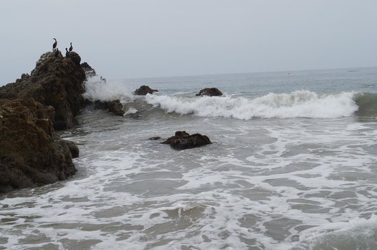 Leo Carrillo State Park and Beach: Waves