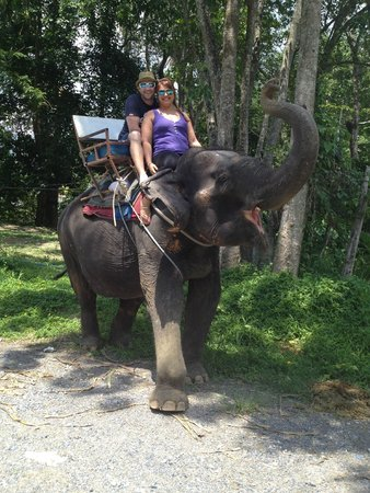 Nirvana Inn : Elephant ride just up the road from hotel