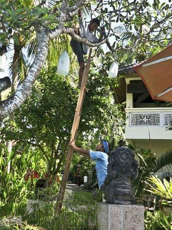 Bayshore Villas Candi Dasa: Changing a light globe