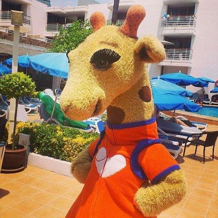 Sunwing Alcudia Beach : My friend Lollo