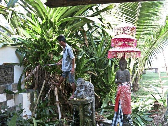 Bayshore Villas Candi Dasa: Trimming the bushes