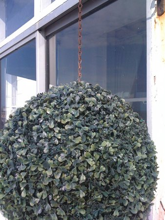 The Strand Hotel: plastic plants on rusted chain