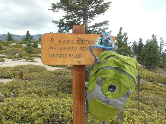 Mount San Jacinto State Park and Wilderness: Almost to the peak!