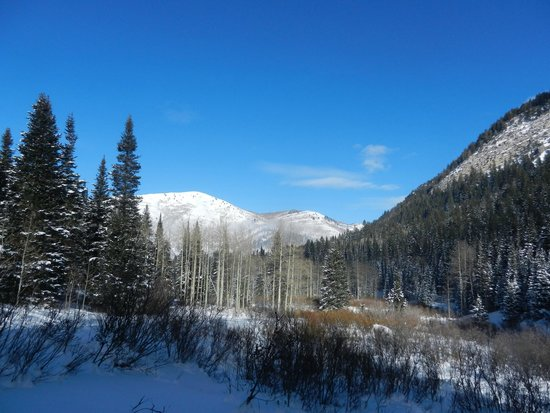 Wasatch Mountains: Snowshoe Hiking to Donut Falls