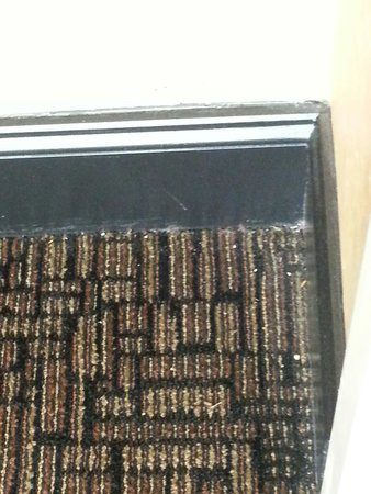 Homewood Suites by Hilton Columbia: Dirty carpet in hallway outside of room 301