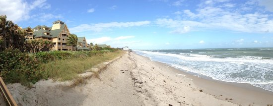 Disney's Vero Beach Resort: Beach