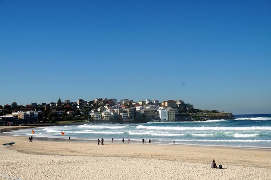 Bondi to Coogee Beach Coastal Walk : bondi beach