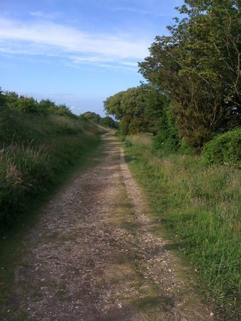 Beachy Head: Walking paths