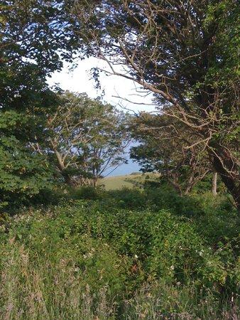 Beachy Head: Peek a boo views....