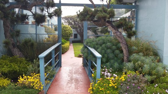 Ocean Park Motel: Walkway to office and central courtyard