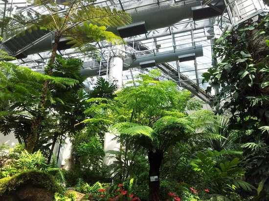 The Forsgate Conservatory