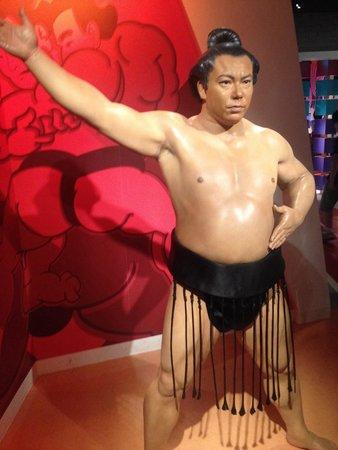 Madame Tussauds Tokyo : Sumo Wrestler