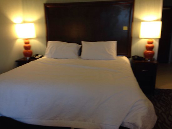 Hampton Inn Corning/Painted Post: King size bed
