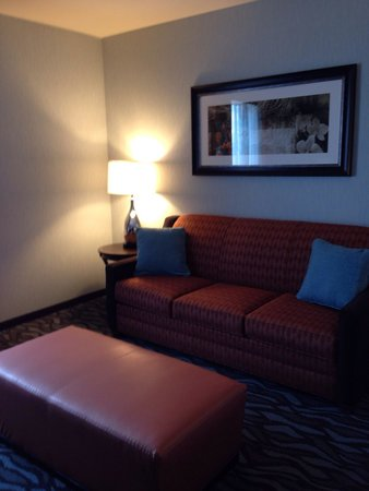 Hampton Inn Corning/Painted Post: Sofa bed
