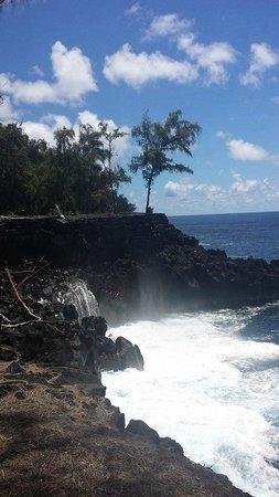 Hawaiian Village Tours: MacKenzie State Park