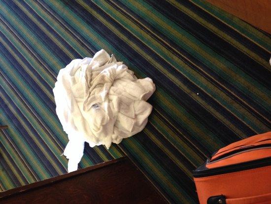 Quality Inn & Suites Rainwater Park: Dirty room