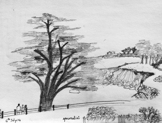 Seven Gables Inn: View of Monterey bay from Arbor Room