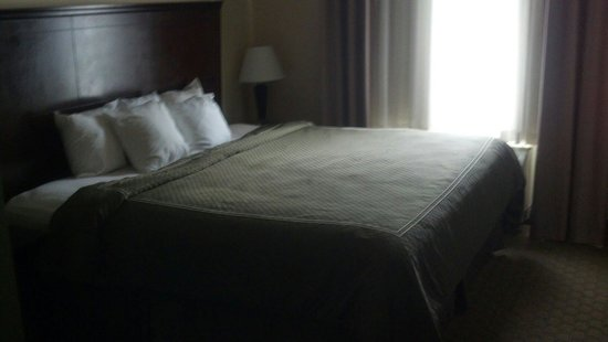 Comfort Suites: King size bed