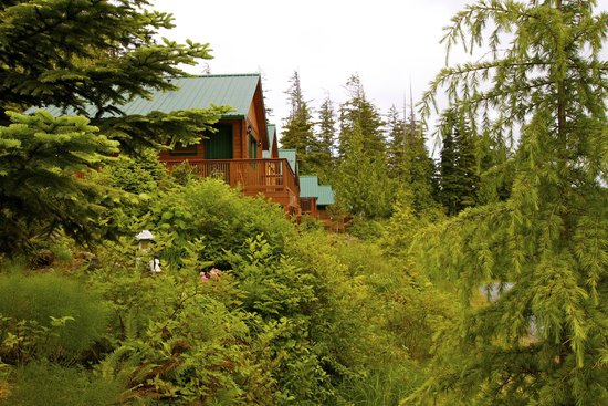 Bear Cove Cottages Resort: The cottages