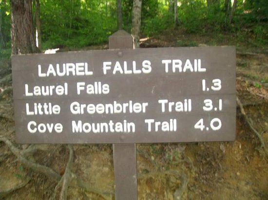 Laurel Falls: Sign at Front of Trail