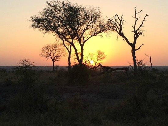 Tintswalo Safari Lodge: Sunset