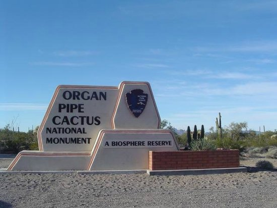 Ajo Mountain Drive: Entering the Organ Pipe Cactus National Monument on SR-85