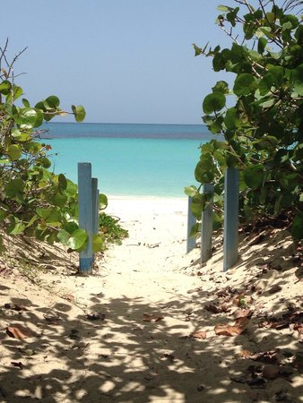 Flamenco Beach: Flamenco calls for You!
