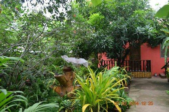 Villa saturnina's mini garden.