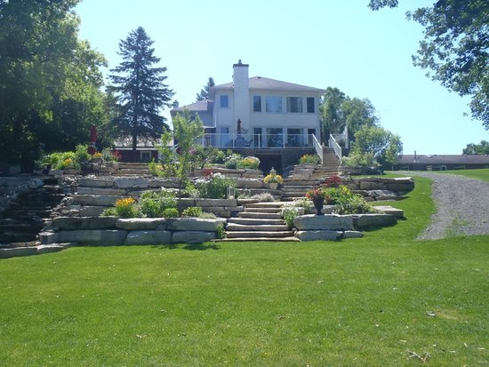 Daisy Hill Bed and Breakfast : back yard