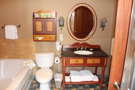 Sommet des Neiges: Bathroom