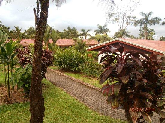 Volcano Lodge & Springs: senderos del hotel