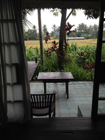 Bali T House: Looking out over the rice paddies from Villa Mateh