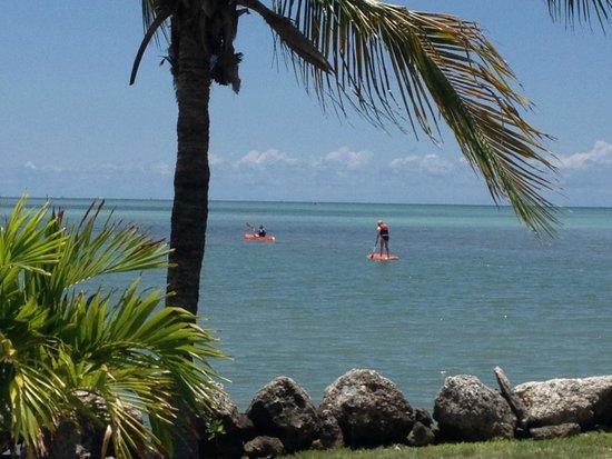 Seascape Motel and Marina: Kayaking and Paddle boarding