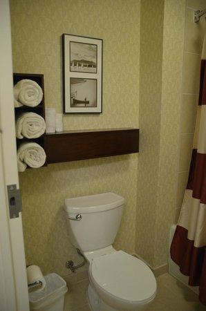 Residence Inn Norfolk Downtown : Bathroom