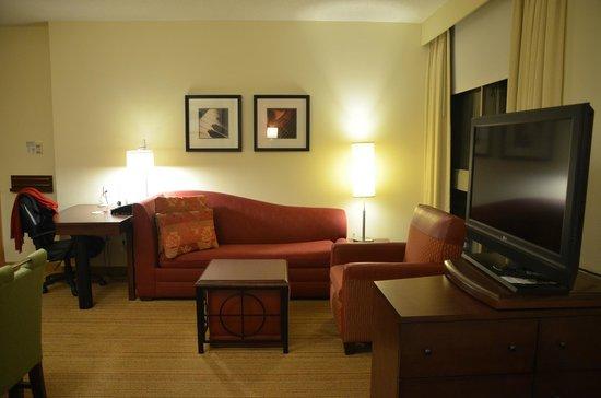 Residence Inn Norfolk Downtown : Cozy living room area