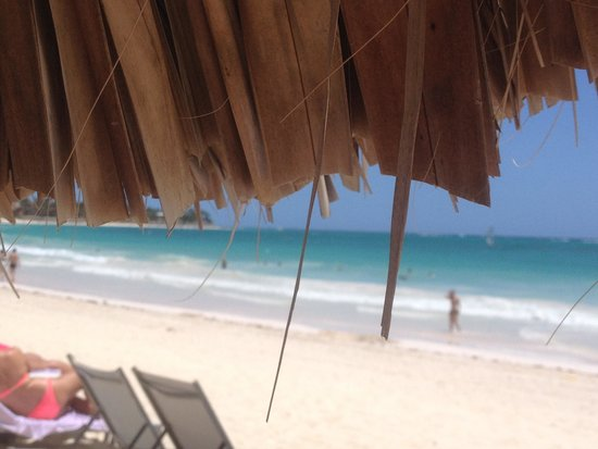 The Reserve at Paradisus Punta Cana: The view from the palapa