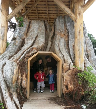 Seabrook Cottage Rentals: The hollowed out trunk
