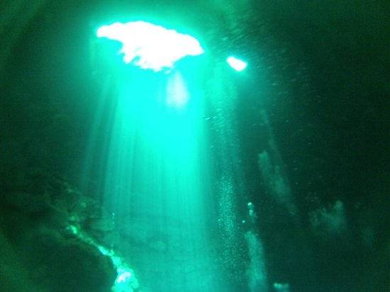Blue Life : The Pit cenote from about 80ft down