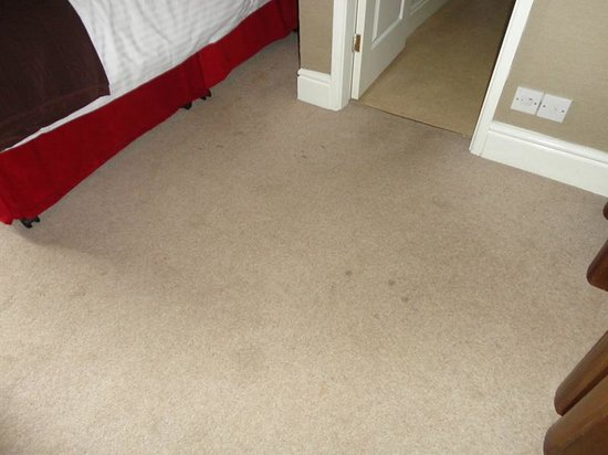Monties Bed and Breakfast: Badly stained carpet