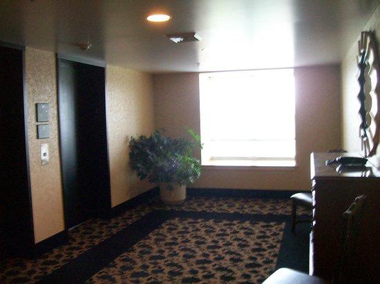Homewood Suites by Hilton Wilmington - Brandywine Valley: Elevator Bank