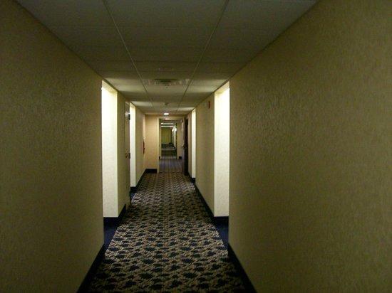 Homewood Suites by Hilton Wilmington - Brandywine Valley: Interior Corridors to Rooms