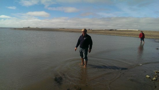 Tundra North Tours: A dip in the Arctic Ocean in Tuktoyaktuk