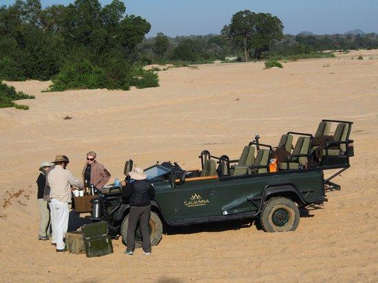 Savanna Private Game Reserve : Morning tea on the Sand river, Sabi Sands (Savanna)