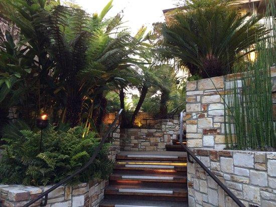Tradewinds Carmel: Courtyard