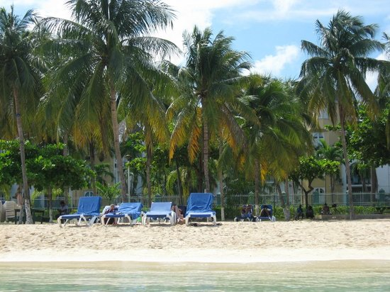 Ocho Rios Bay Beach: Chairs under palm trees